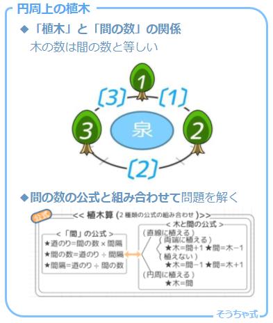 植木算の場合分けの一つ。円周上の植木の「木の数」と「間の数」の関係