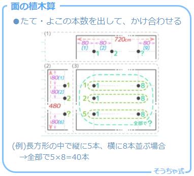 植木算の応用問題の一つで縦横に面上に木を植える「面の植木算」の考え方と図解