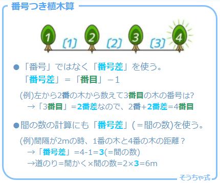 植木算の応用問題の一つで木に番号がついている「番号つき植木算」の考え方と図解